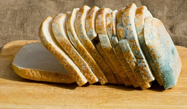 Микотоксини во храната и мерки за превенција