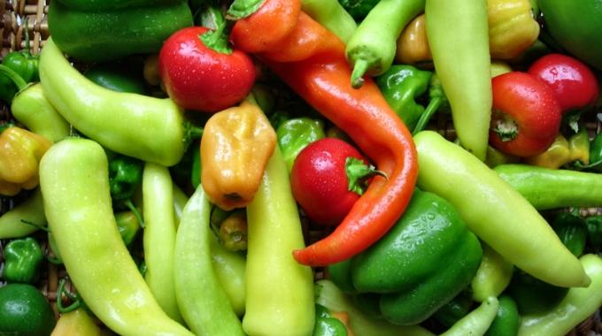 Спроведување на мониторингот на резидуи на пестициди во зеленчук, овошје и нивни производи